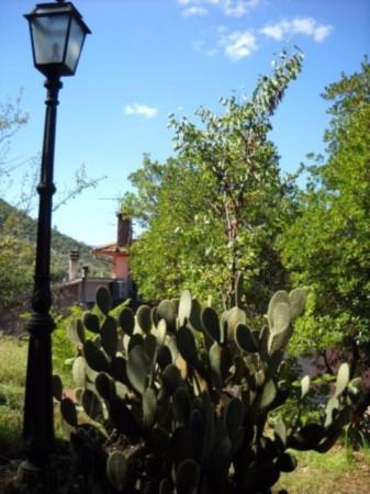 Villa in vendita a Spoleto, Con giardino, 670 mq - Foto 11
