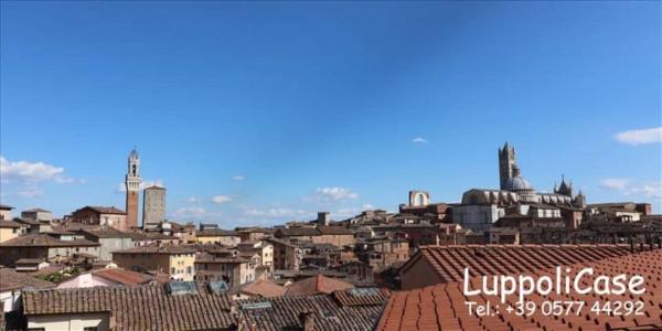 Appartamento in affitto a Siena, Arredato, 130 mq - Foto 10