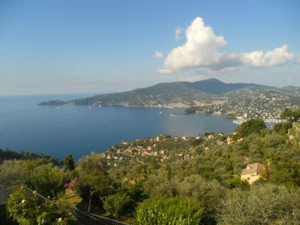 Villa in vendita a Zoagli, Cornice Di S.ambrogio, Con giardino, 150 mq