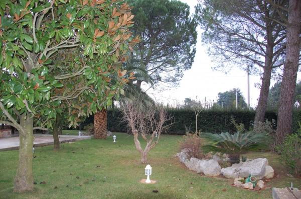 Villa in vendita a Martina Franca, Contrada Paretone, Con giardino, 350 mq - Foto 12