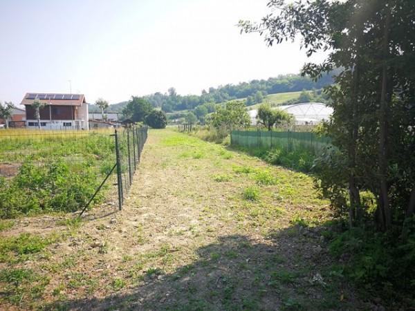 Locale Commerciale  in vendita a Isola d'Asti, Rurale, Con giardino, 50 mq - Foto 8