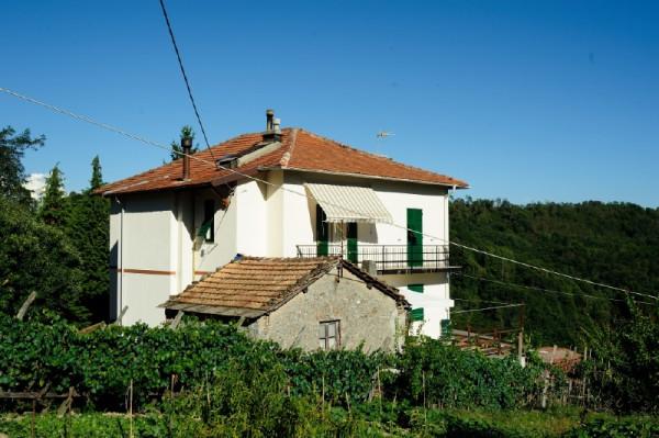 Casa indipendente in vendita a Campomorone, Langasco, Con giardino, 400 mq - Foto 33