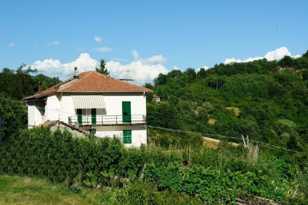 Casa indipendente in vendita a Campomorone, Langasco, Con giardino, 400 mq - Foto 15