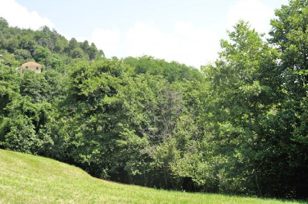 Casa indipendente in vendita a Campomorone, Langasco, Con giardino, 400 mq - Foto 7