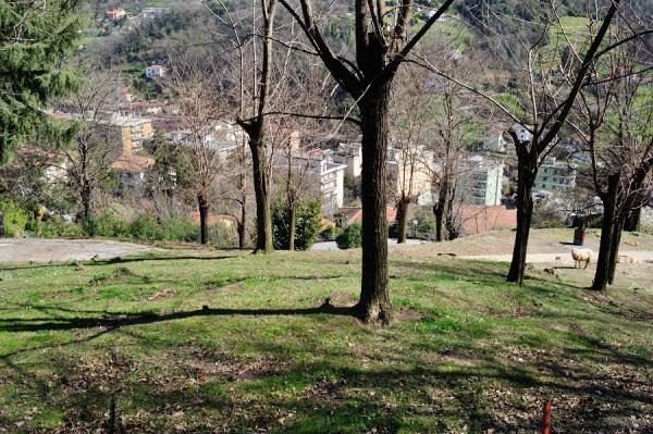 Villa in vendita a Genova, Pontedecimo, Con giardino, 390 mq - Foto 22