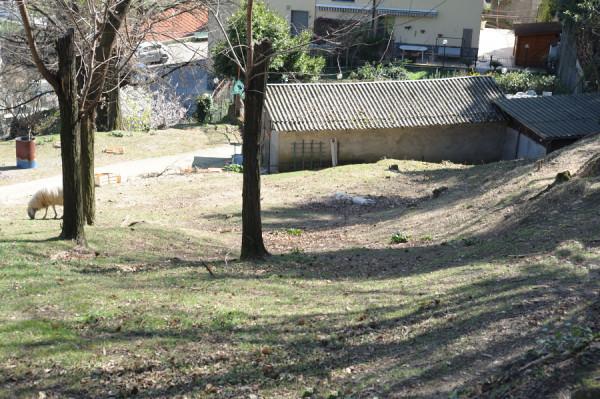Villa in vendita a Genova, Pontedecimo, Con giardino, 390 mq - Foto 6