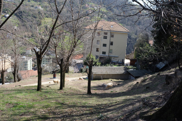 Villa in vendita a Genova, Pontedecimo, Con giardino, 390 mq - Foto 25
