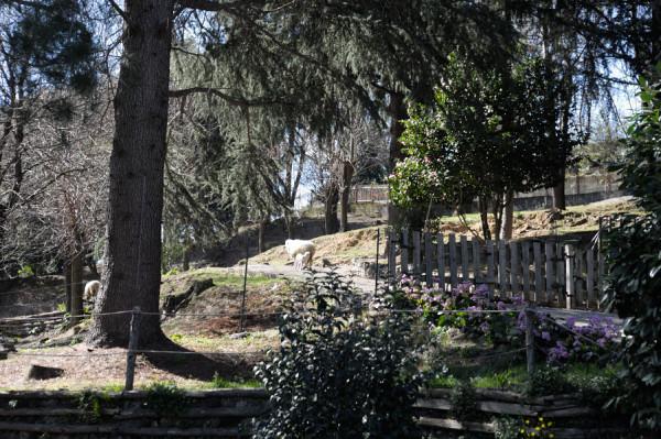 Villa in vendita a Genova, Pontedecimo, Con giardino, 390 mq - Foto 19