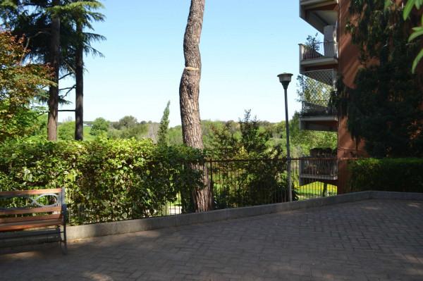 Appartamento in affitto a Roma, Monteverde Nuovo, Arredato, 25 mq - Foto 5