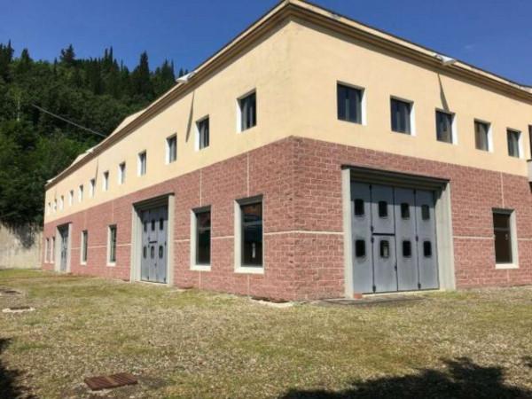 Capannone in affitto a Rignano sull'Arno, Rosano, 4000 mq