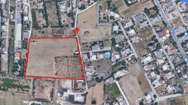Locale Commerciale  in vendita a Taranto, Lama, 22100 mq - Foto 7