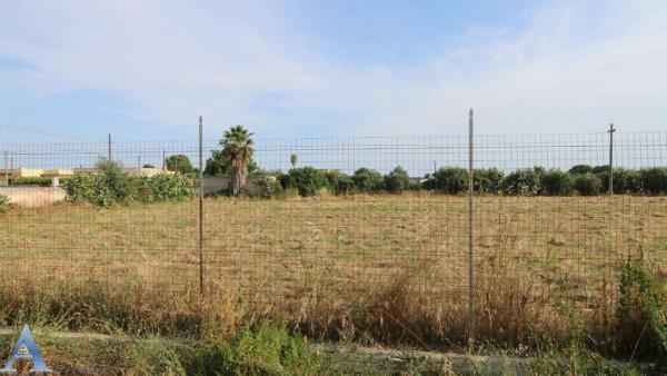 Locale Commerciale  in vendita a Taranto, Lama, 22100 mq - Foto 8