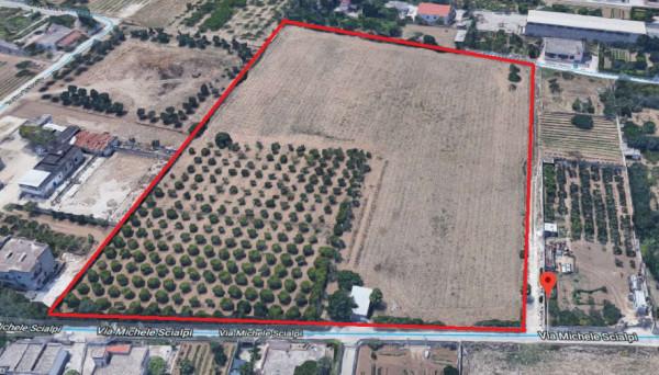 Locale Commerciale  in vendita a Taranto, Lama, 22100 mq - Foto 11