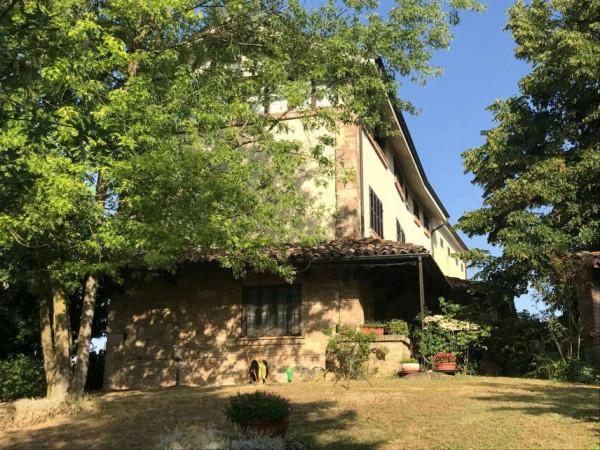 Casa indipendente in vendita a San Salvatore Monferrato, Con giardino, 350 mq
