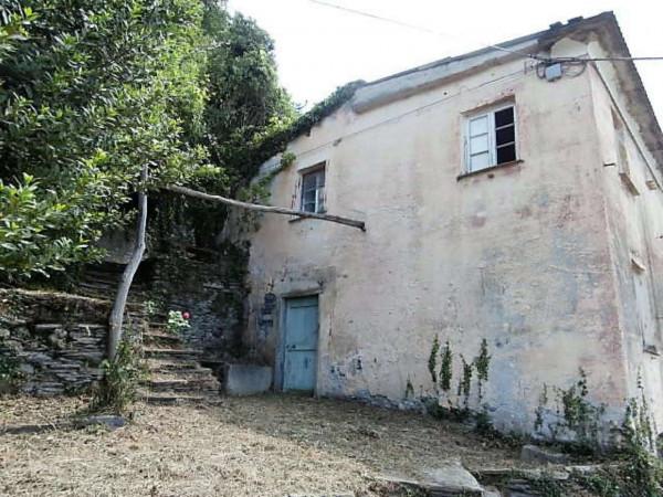 Rustico/Casale in vendita a Cogorno, Residenziale, Con giardino, 400 mq - Foto 15