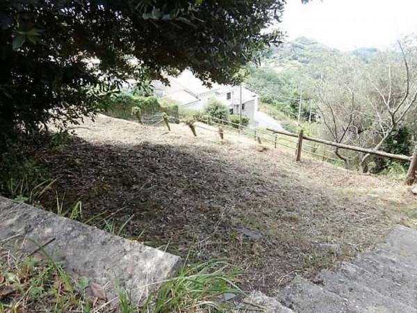 Rustico/Casale in vendita a Cogorno, Residenziale, Con giardino, 400 mq - Foto 8