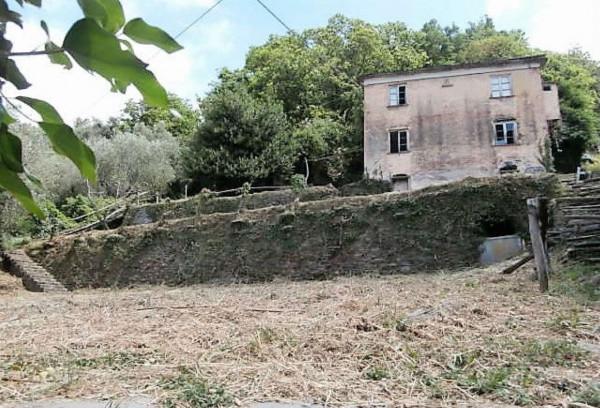 Rustico/Casale in vendita a Cogorno, Residenziale, Con giardino, 400 mq - Foto 17