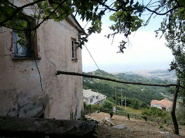 Rustico/Casale in vendita a Cogorno, Residenziale, Con giardino, 400 mq - Foto 18