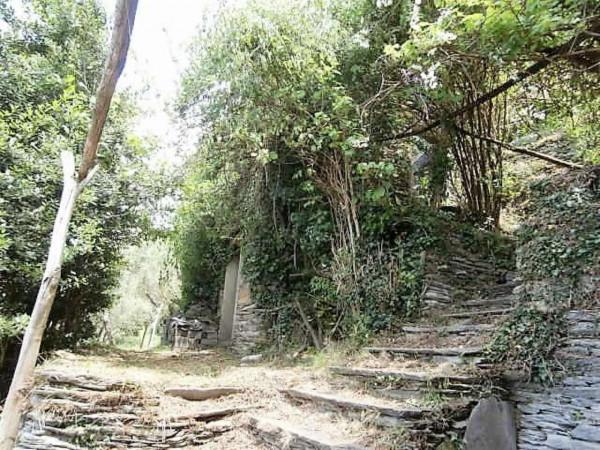 Rustico/Casale in vendita a Cogorno, Residenziale, Con giardino, 400 mq - Foto 10