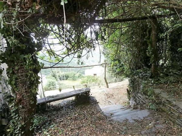 Rustico/Casale in vendita a Cogorno, Residenziale, Con giardino, 400 mq - Foto 9