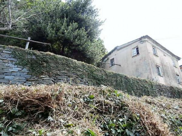 Rustico/Casale in vendita a Cogorno, Residenziale, Con giardino, 400 mq - Foto 7