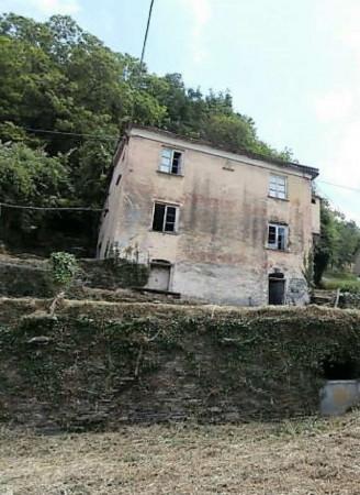 Rustico/Casale in vendita a Cogorno, Residenziale, Con giardino, 400 mq - Foto 6