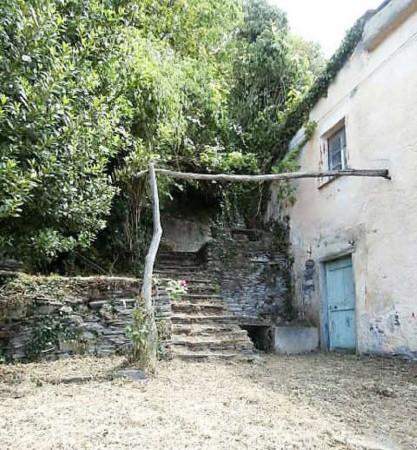 Rustico/Casale in vendita a Cogorno, Residenziale, Con giardino, 400 mq - Foto 14