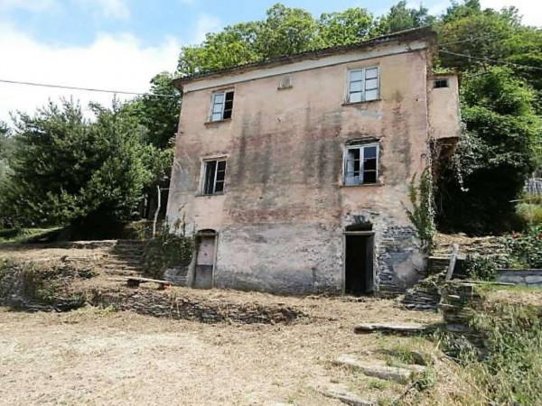 Rustico/Casale in vendita a Cogorno, Residenziale, Con giardino, 400 mq - Foto 16