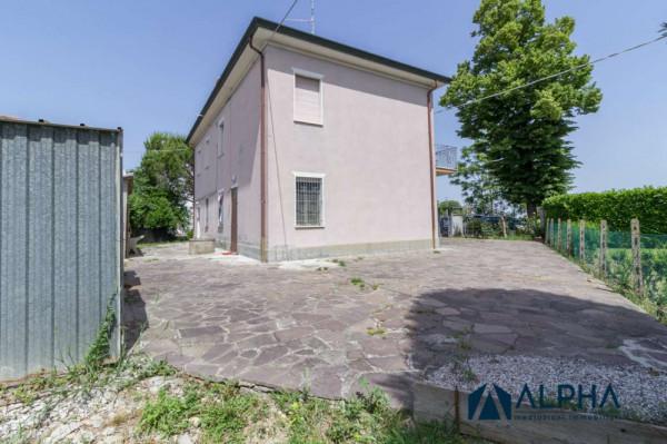 Casa indipendente in vendita a Bertinoro, Con giardino, 250 mq