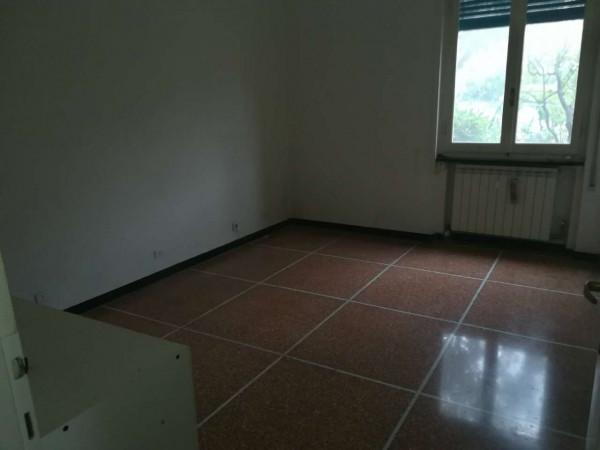 Appartamento in affitto a Camogli, 55 mq - Foto 17