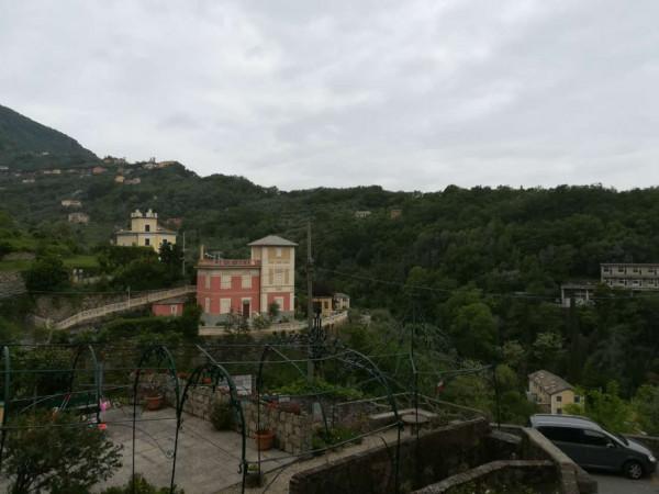 Appartamento in affitto a Camogli, 55 mq - Foto 18