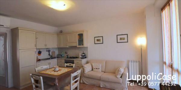 Appartamento in vendita a Monteriggioni, 54 mq - Foto 8