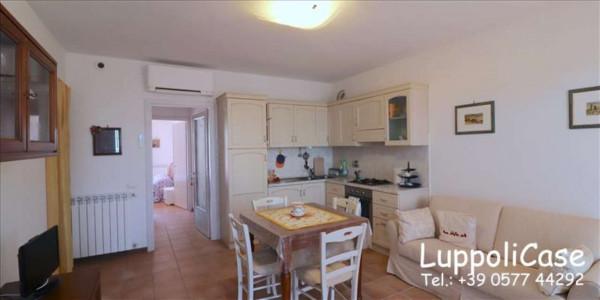 Appartamento in vendita a Monteriggioni, 54 mq - Foto 11