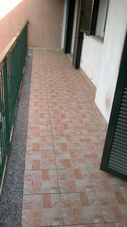 Appartamento in affitto a Caronno Pertusella, 55 mq - Foto 4
