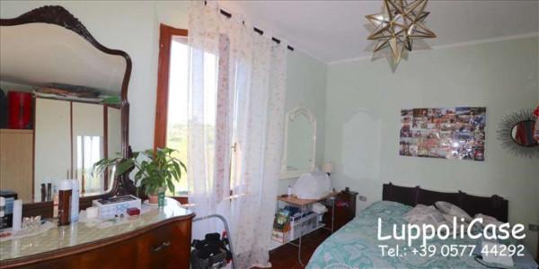 Appartamento in affitto a Siena, Arredato, 70 mq - Foto 6