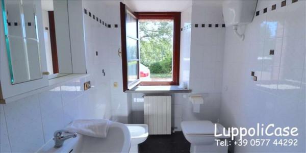 Villa in vendita a Castelnuovo Berardenga, Arredato, con giardino, 318 mq - Foto 15