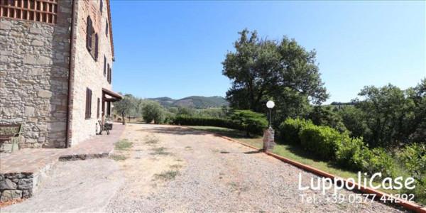 Villa in vendita a Castelnuovo Berardenga, Arredato, con giardino, 318 mq - Foto 7