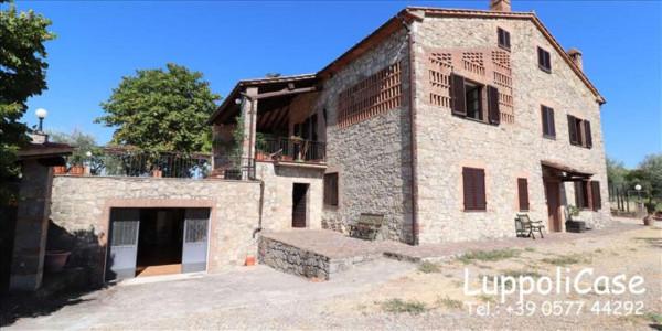 Villa in vendita a Castelnuovo Berardenga, Arredato, con giardino, 318 mq - Foto 9