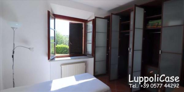 Villa in vendita a Castelnuovo Berardenga, Arredato, con giardino, 318 mq - Foto 14