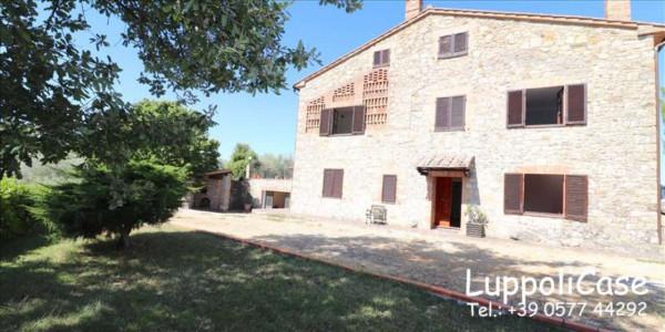 Villa in vendita a Castelnuovo Berardenga, Arredato, con giardino, 318 mq - Foto 10
