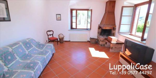 Villa in vendita a Castelnuovo Berardenga, Arredato, con giardino, 318 mq - Foto 18