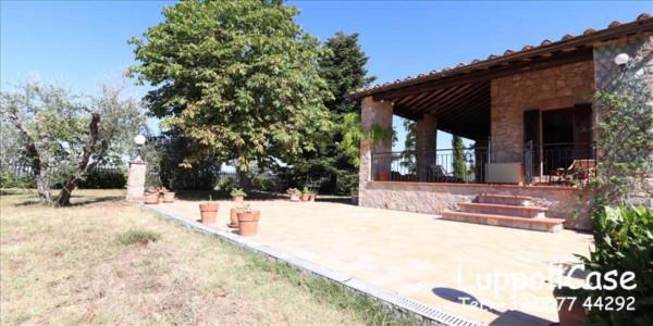 Villa in vendita a Castelnuovo Berardenga, Arredato, con giardino, 318 mq