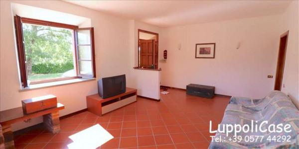 Villa in vendita a Castelnuovo Berardenga, Arredato, con giardino, 318 mq - Foto 17