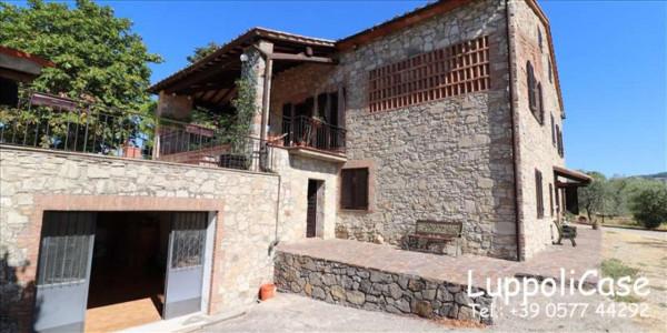 Villa in vendita a Castelnuovo Berardenga, Arredato, con giardino, 318 mq - Foto 8