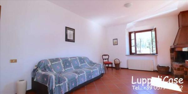 Villa in vendita a Castelnuovo Berardenga, Arredato, con giardino, 318 mq - Foto 19