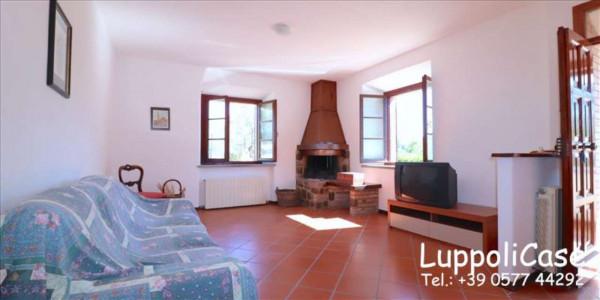 Villa in vendita a Castelnuovo Berardenga, Arredato, con giardino, 318 mq - Foto 20