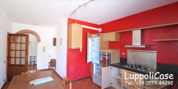 Villa in vendita a Castelnuovo Berardenga, Arredato, con giardino, 318 mq - Foto 16