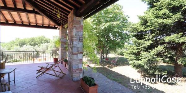 Villa in vendita a Castelnuovo Berardenga, Arredato, con giardino, 318 mq - Foto 2