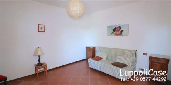 Villa in vendita a Castelnuovo Berardenga, Arredato, con giardino, 318 mq - Foto 12