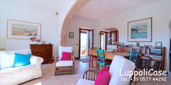 Villa in vendita a Castelnuovo Berardenga, Arredato, con giardino, 318 mq - Foto 33